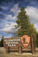 Besuch des Yellowstone-Nationalparks in der Mitte August