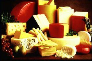 Wie wird Käse hergestellt?