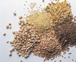 Gewusst wie: Kochen, Weizen