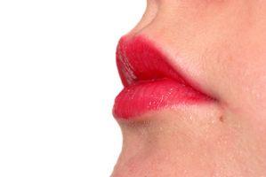 Marilyn Monroe Lippen Bewerbungsinfos