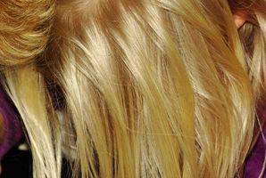 Dermatologische Ernährung für gesundes Haar & Kopfhaut