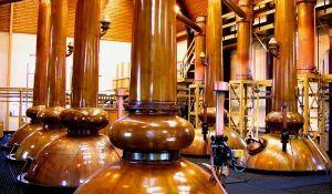 Destillation-Prozeß von Gin