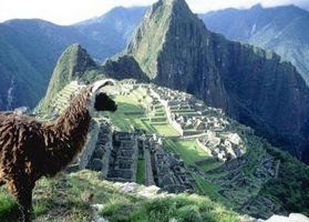 Wie man nach Machu Picchu für Urlaub
