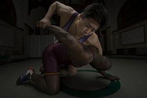 Wie Sie Ihren eigenen Wrestler einheitliche