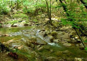 RV Parks und Campingplätze im westlichen North Carolina