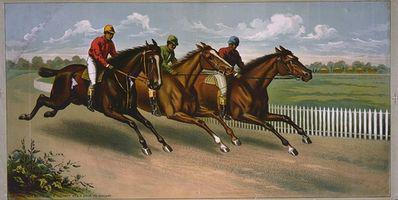 Pferdewetten Tipps