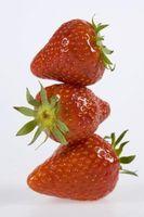 Was sind die Typen & Marken von Erdbeeren?