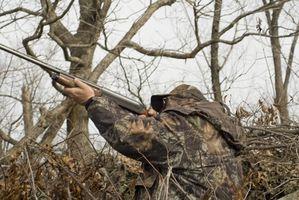 Die besten Grafschaften Hunt auf öffentlichen Flächen in Ohio