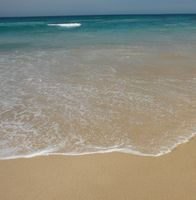Myrtle Beach Hotels nahe Familie Kingdom