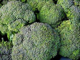 Gewusst wie: Brokkoli mit einem Dampfer Dampf