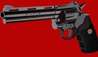So identifizieren Sie eine Magnum 500
