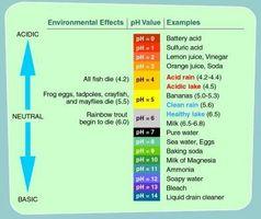Wie Wasser Alkalität Affekt?