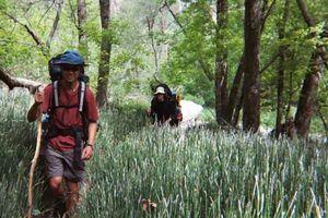 Wie Common Wandern Verletzungen zu verhindern
