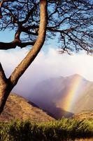 Anreise nach Hawaii auf Osterferien