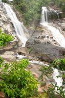 Wildtiere & Pflanzenleben in Thailand