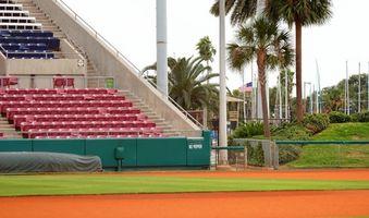 Collegiate Baseball Regeln