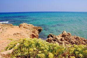Hotels in Agia Marina, Crete