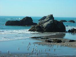 RV-Parks an der Küste Oregons