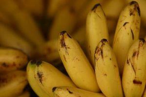 Wie man Bananen Firma hält
