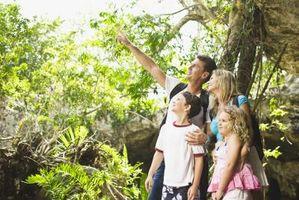 So finden Sie preiswerte Ferien für Familien mit Kindern