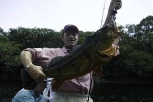 Wie man ein Fischerei-Gaff