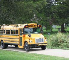 Warum haben die Busse keine Sicherheitsgurte?