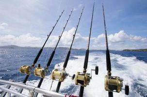 Wie man Angeln Köder für Meeresfische