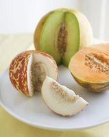 Wie Sie wissen, wann eine Honigtau Melone zu Essen fertig ist