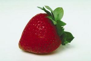 Was sind die Flecken auf eine Erdbeere?
