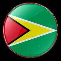 So erhalten Sie einen guyanischen Reisepass